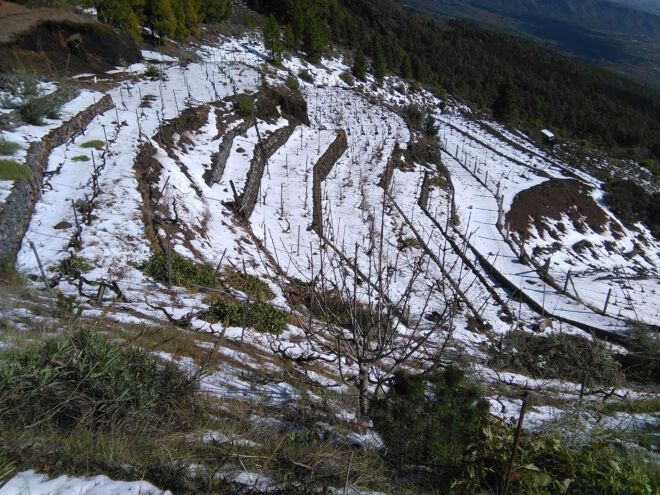 Las-Dehesas-21-Febrero-(5)
